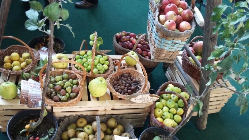 Sejem Narava zdravje v Ljubljani