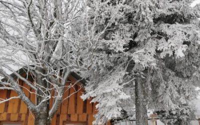 Zimovanje na Rogli 1. dan